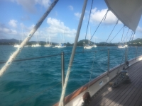 Mitsegeln und Kojencharter: Windward Islands: Martinique - Grenadines Bild 2